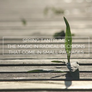 Spring tantrums + the magic in radical decisions that come in small packages