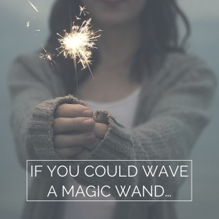 if you could wave a magic wand…1